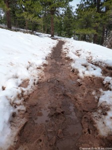A muddy mess on the Mesa Trail. What happens when 2ft of snow melts very quickly, 4/20/13.