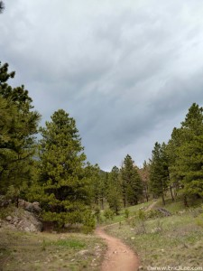 Dark clouds looming ahead, thunder abounds as I climb up Spring Creek for the final time, mile 42.