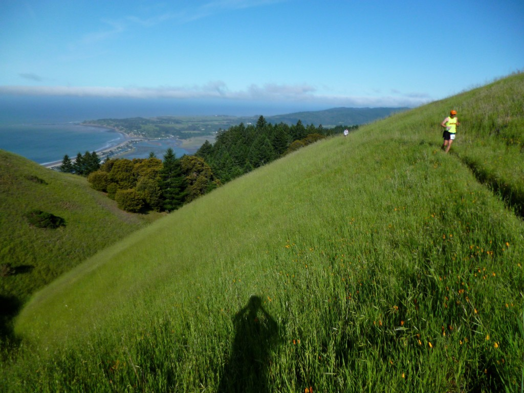 Running the Bolinas Ridge around mm17 of the Miwok 100k.