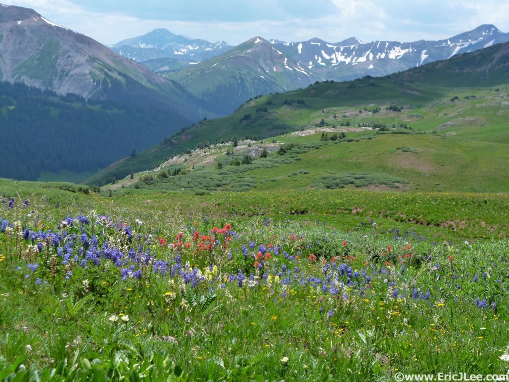 One of many stunning scenes, mountains and flowers along the Maroon Bells Four Pass Loop.