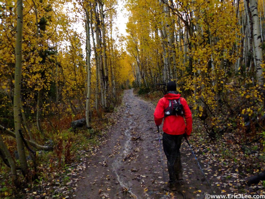 Cruising through the changing fall colors between Beaver Campground and Ranger Dip, its a muddy mess.