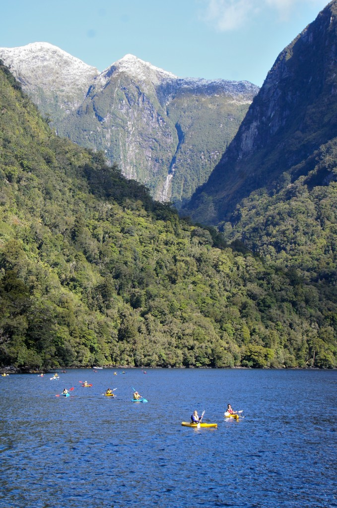 Kayaking in Doubtful Sound, makes one feel small.