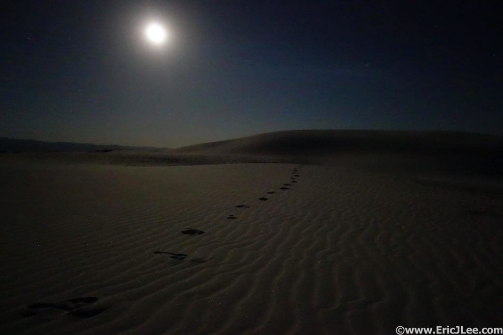 Walking by moonlight at White Sands National Monument.